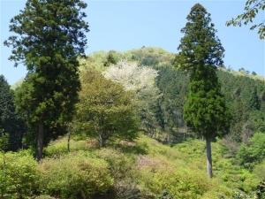 今熊神社周辺の景観