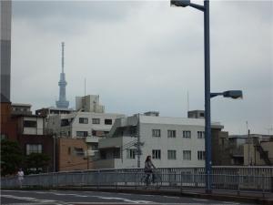 東京スカイツリーを望む