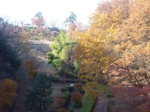 物見山公園の紅葉