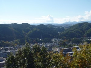 天覧山からの眺め