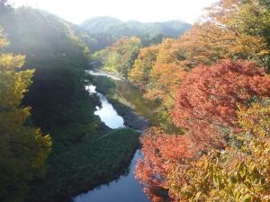 入間川の紅葉