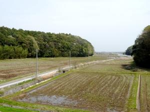 松虫川橋からの眺め
