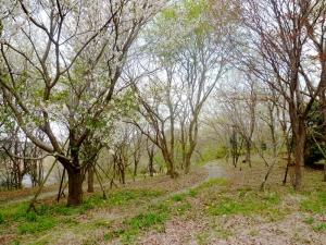 松虫姫公園