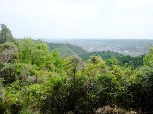 天竺山からの眺め