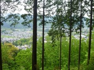 天竺山下山途中の景色